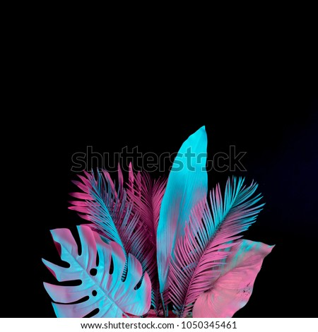 Tropical and palm leaves in vibrant bold gradient holographic neon  colors. Concept art. Minimal surrealism background. #1050345461