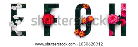 Flower font Alphabet e, f, g, h, made of Real alive flowers with Precious paper cut shape of letter.Collection of brilliant flora font for your unique decoration in spring, summer & many concept idea Royalty-Free Stock Photo #1050620912