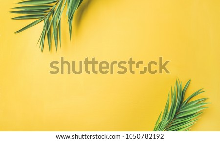 Flat-lay of green palm branches over yellow background, top view, copy space, wide composition. Summer vacation, travel or fashion concept #1050782192