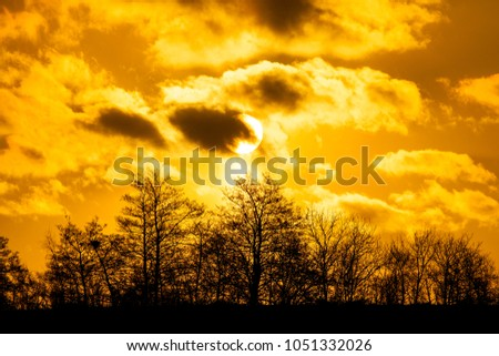 sunrise over forest with dramatic clouds and warm light #1051332026