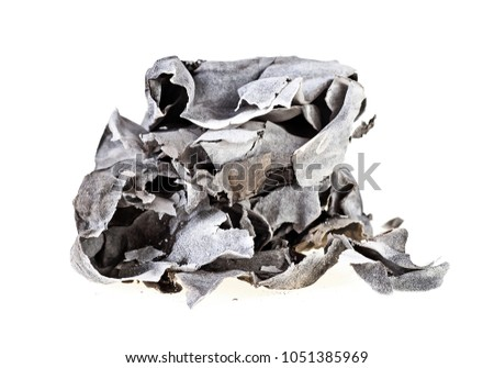 Burned, charred paper isolated on white background #1051385969