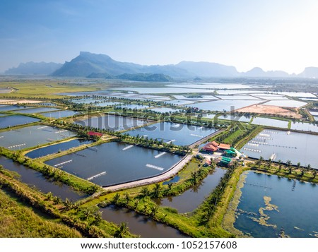 Aerial view of the prawn farm with aerator pump in front of Khao Sam Roi Yot National Park, Thailand. The growing aquaculture business continuously threatening the nearby wetlands. #1052157608