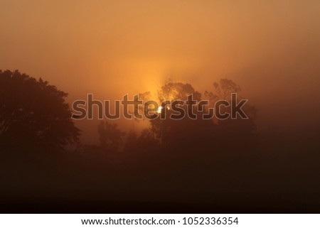 Orange silhouette of the sun rising through the trees on a foggy morning #1052336354