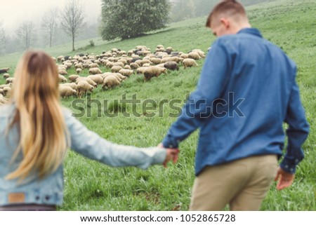 Young couple on a walk in the mountains. Herd of sheep. Focus on the sheep. Mainly cloudy. #1052865728