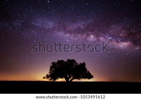 Milky Way over Ft. Griffin Texas #1053491612