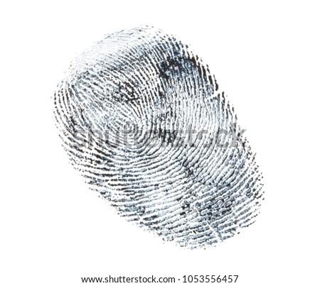 black fingerprint pattern isolated on white background. #1053556457