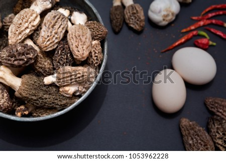 Morel's are distinctive mushrooms. They are prized by gourmet cooks, particularly for special cuisine. #1053962228