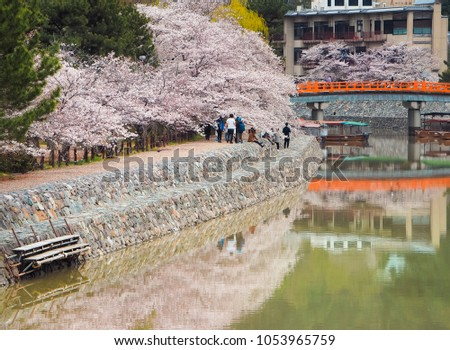 Uji City, Kyoto, Japan - April 8, 2017 : People's rest by Uji river watching the cherry blossom with beautiful landscape, Uji is a small city situated between Kyoto and Nara. #1053965759
