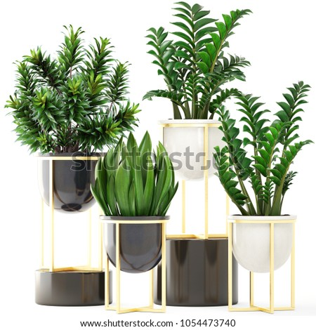 3d illustration of plants on white background #1054473740