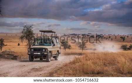 A game drive Safari in Serengeti national park,Tanzania. Royalty-Free Stock Photo #1054716632