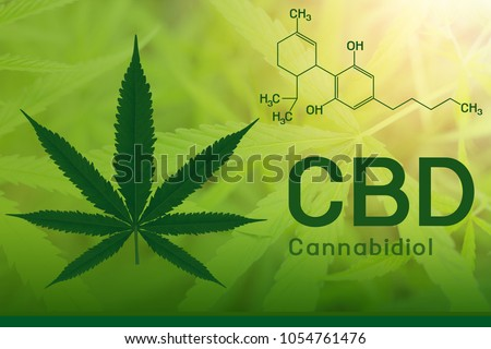 Image cannabis of the formula CBD Royalty-Free Stock Photo #1054761476