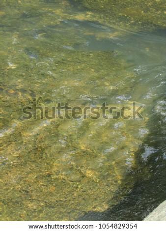 Cossatot River, Arkansas #1054829354