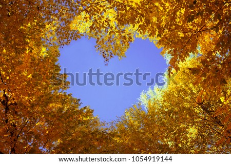 Heart from autumn leaves with blue sky inside #1054919144