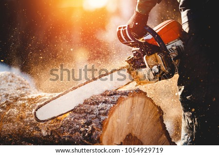 Chainsaw. Close-up of woodcutter sawing chain saw in motion, sawdust fly to sides. Concept is to bring down trees. #1054929719