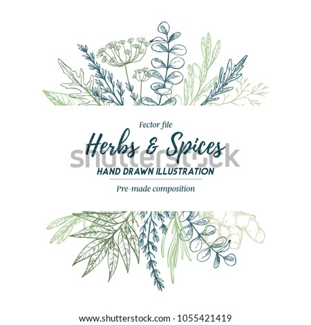 Hand drawn vector illustration. Frame with herbs and spices (sage, tarragon, ginger). Herbal pre-made composition. Perfect for menu, cards, prints, packing, leaflets #1055421419