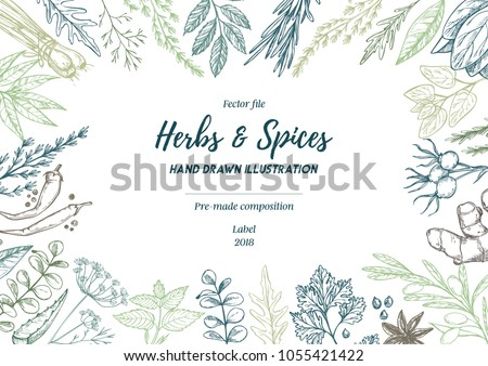 Hand drawn vector illustration. Frame with herbs and spices (sage, tarragon, ginger). Herbal pre-made composition. Perfect for menu, cards, prints, packing, leaflets #1055421422