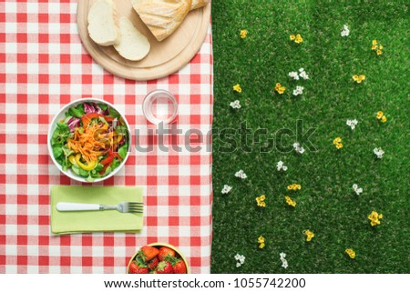 Picnic setting: fresh salad bowl on a checked tablecloth
