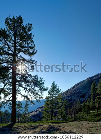 A view on the Sentinel Dome, Yosemite National Park #1056112229