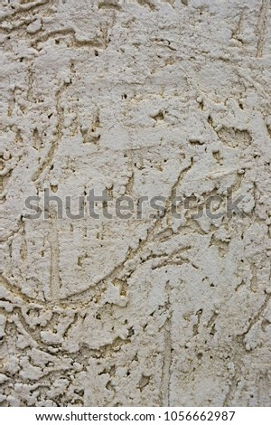 Texture of the decorative stucco wall as a background. Bark beetle style. #1056662987