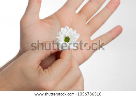 Flower in hand. Chamomile in the man's hand. Free space. #1056736310