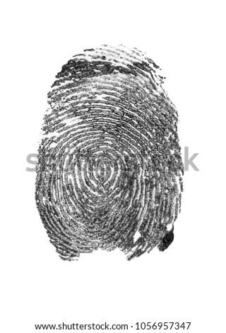fingerprint isolated on white background #1056957347