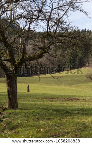 nature landscape of wanderlust in south germany rural countryside at easter springtime holiday sunny blue sky morning #1058206838