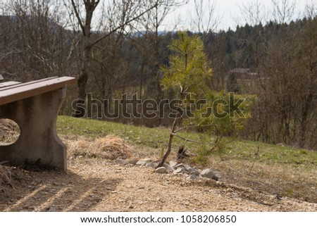 nature landscape of wanderlust in south germany rural countryside at easter springtime holiday sunny blue sky morning #1058206850