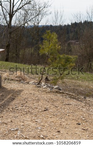 nature landscape of wanderlust in south germany rural countryside at easter springtime holiday sunny blue sky morning #1058206859