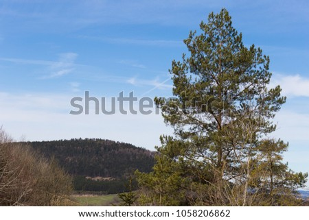 nature landscape of wanderlust in south germany rural countryside at easter springtime holiday sunny blue sky morning #1058206862