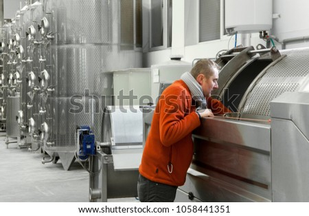 Manager checks the status of the press on the vine in winery. He is looking inside of open drum of press. On the background are fermenting tanks for vine. #1058441351