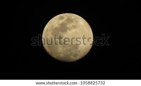 Moon View Night