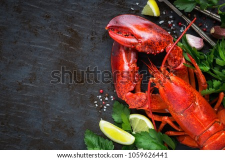 Whole red lobster with fresh parsley, slices of lemon, garlic, salt and pepper beans. Overhead view with plenty of copy space for your text #1059626441