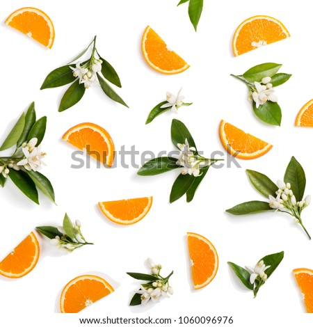 Top view of blossoming branches of orange tree with leaves and sliced orange fruit, isolated on white background. #1060096976
