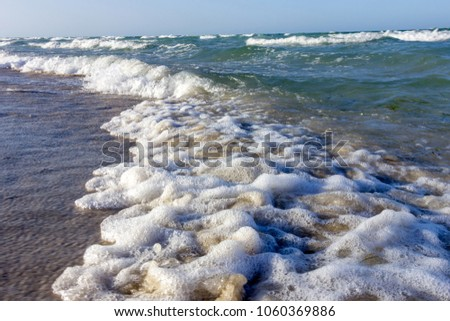 Surf after low tide in the Mediterranean Sea. Algae and waves. #1060369886