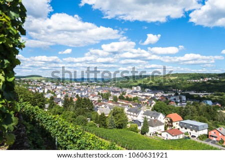 Grevenmacher, Luxembourg - August 6 2017: Vineyards in the Grevenmacher region of Luxembourg along the moselle river #1060631921