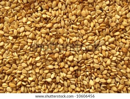 Small flat sesame seeds #10606456