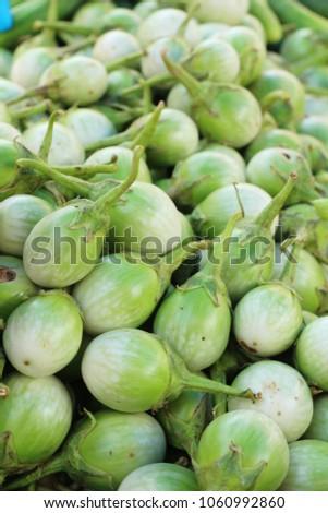 Fresh eggplant green organic in the market #1060992860