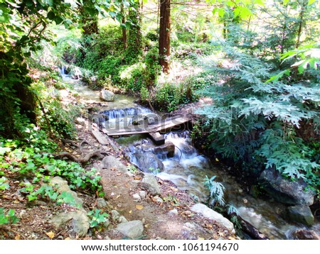 Small Stream with Waterfall and Plank as Handmade Bridge - Road Trip Down Highway 1 Discovery Route Along the California Pacific Coast  #1061194670