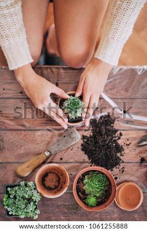 Beautiful mixed race woman gardening. #1061255888
