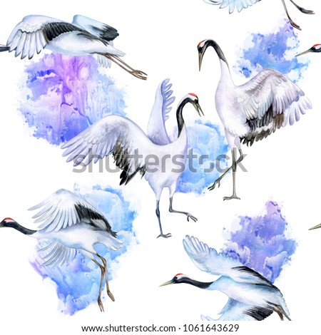 Japanese cranes fly in the sky. Red-topped crane. Birds on a background of abstract bluebear of the sky or snow. Watercolor. Illustration. Dancing couple in love