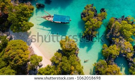 aerial view of the pamunda island, Zanzibar Royalty-Free Stock Photo #1062018698