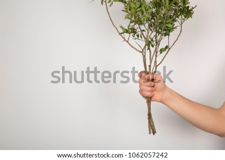 Guy holding a tree branch on a white background. #1062057242