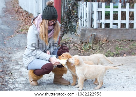 Beautiful girl is playing with brown baby labrador dogs in garden #1062222953