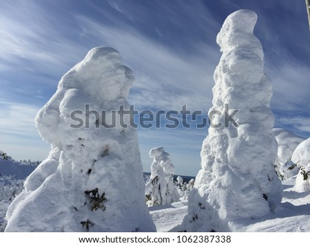 Trees under heavy snow load in bright winter spring sunshine Easter holiday in North Finland Kuusamo beautiful Scandinavian nature snowy mountain view blue Sky #1062387338