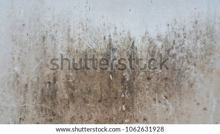 Dirty white cement wall , texture #1062631928