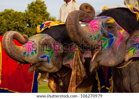 Two painted elephants posing at the Elephant festival in Jaipur,India Royalty-Free Stock Photo #106270979