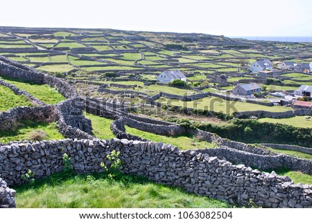 """Limbstone walls on Inisheer, Aran Islands go to horizon with a slice of the Atlantic. They're """"single"""" walls and stacked high, unlike New England walls which would have to be double to reach height. #1063082504"""