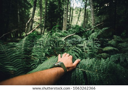 Close up of explorer male hand in green rainy forest.Survival travel,lifestyle concept. #1063262366