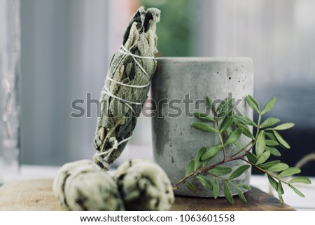 White salvia incense. Salvia ritual concept. White sage, scared sage, california sage, bee sage. #1063601558