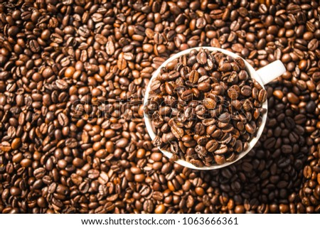 Brown coffee beans in white cup or mug #1063666361